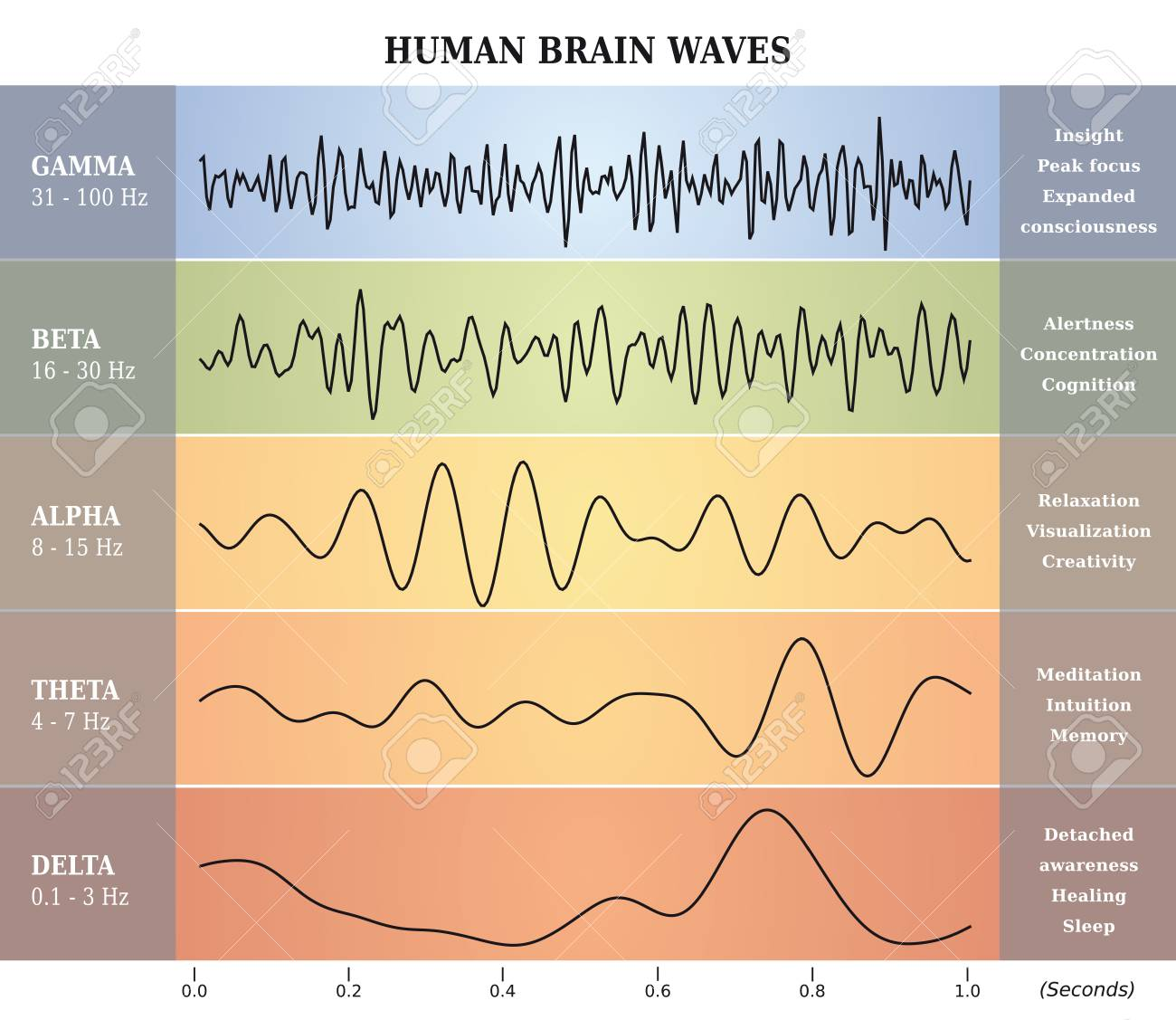 BrainWaves_BW